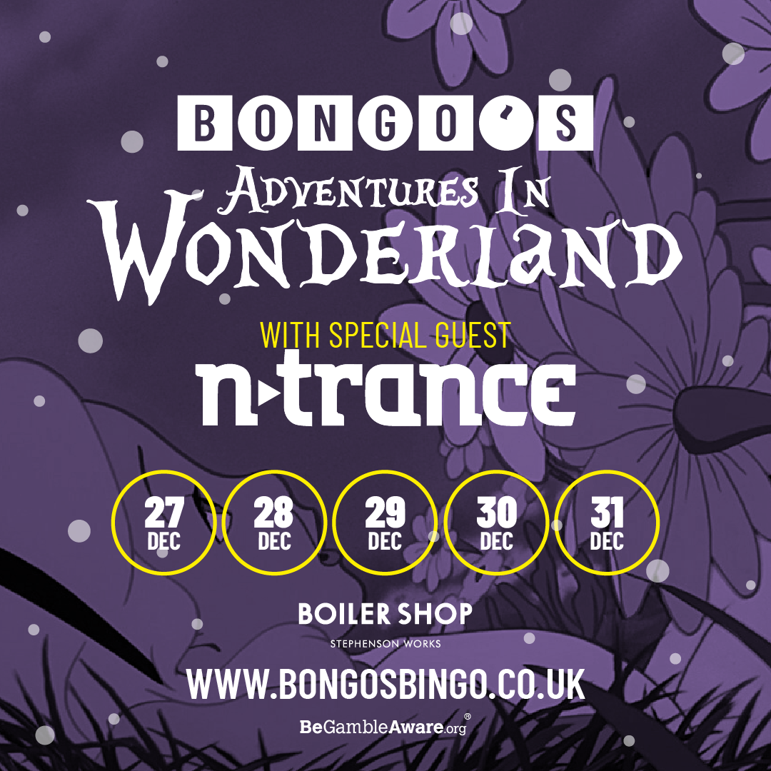 #AD – Bongos Bingo Christmas Dates – All you need to know