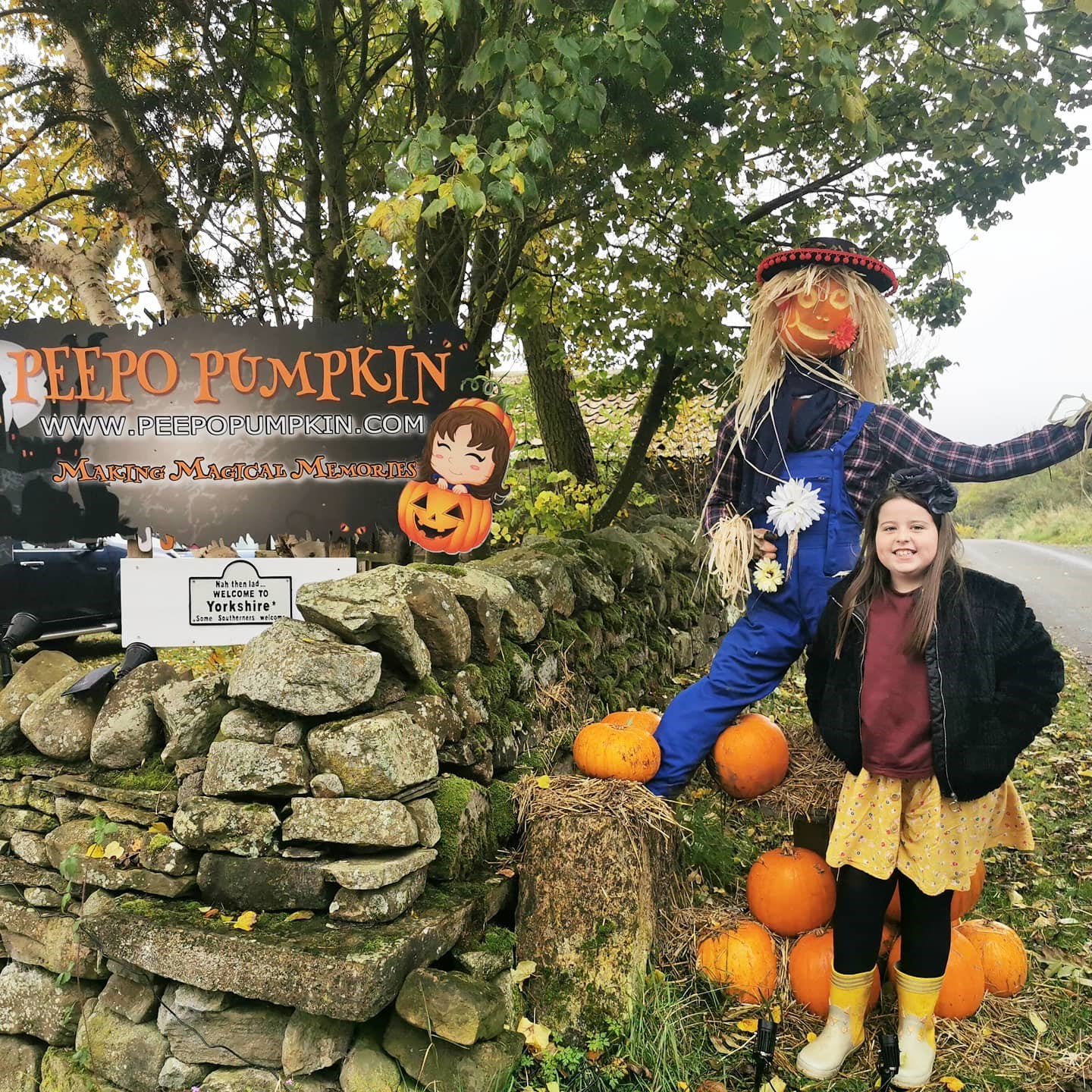 Pumpkin Picking at Peepo Pumpkin's Patch